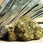 Why cannabis is still a cash business