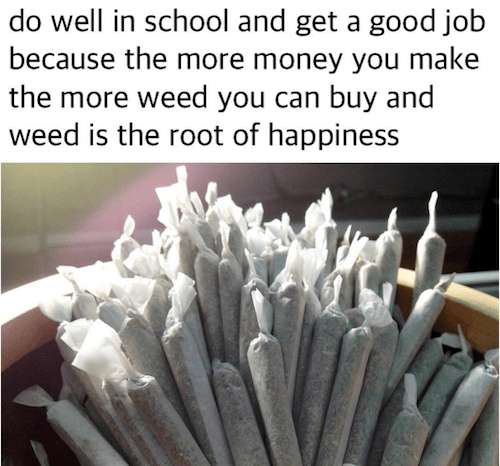 Do well in school and get a good job because the more money you make the more weed you can buy and weed is the root of happiness