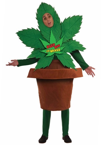 Man dressed as pot plant