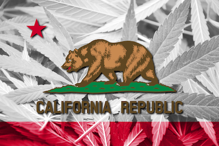 California state flag with marijuana