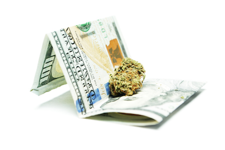 marijuana on a one hundred dollar bill, money for marijuana, marijuana tipping