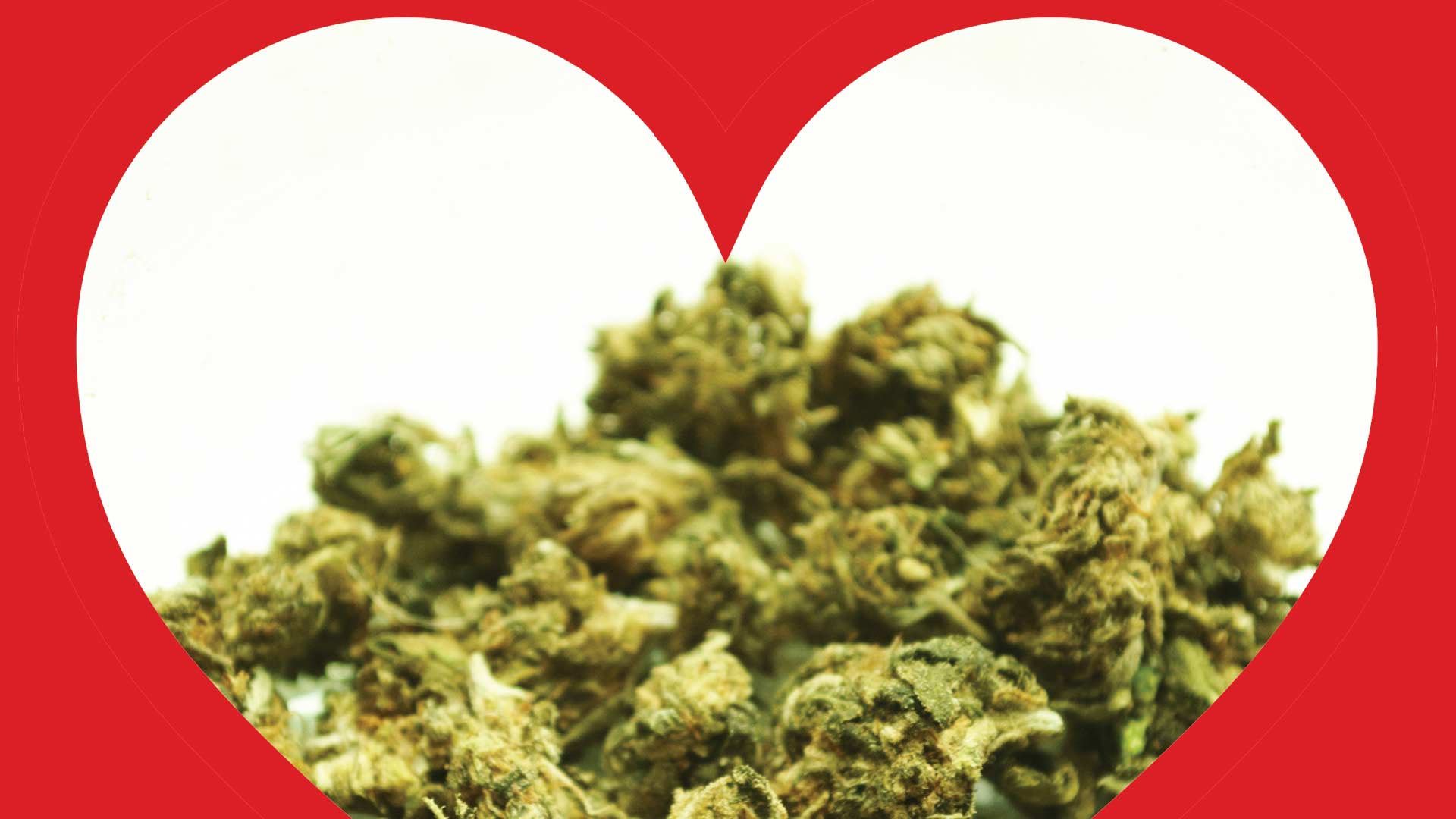 How cannabis affects congenital heart disease