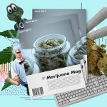 Cannabis magazines worth a read