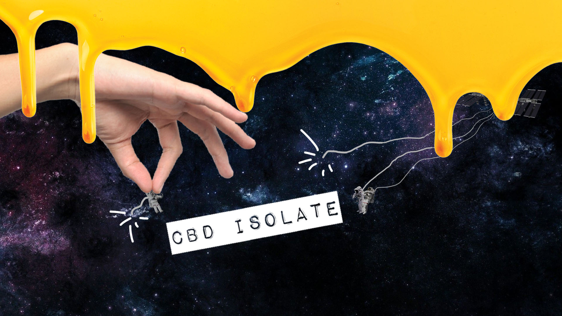 What's a CBD Isolate?