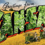There's no place for hemp in Kansas