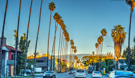 Cannabis Dispensaries Near the Sunset Strip