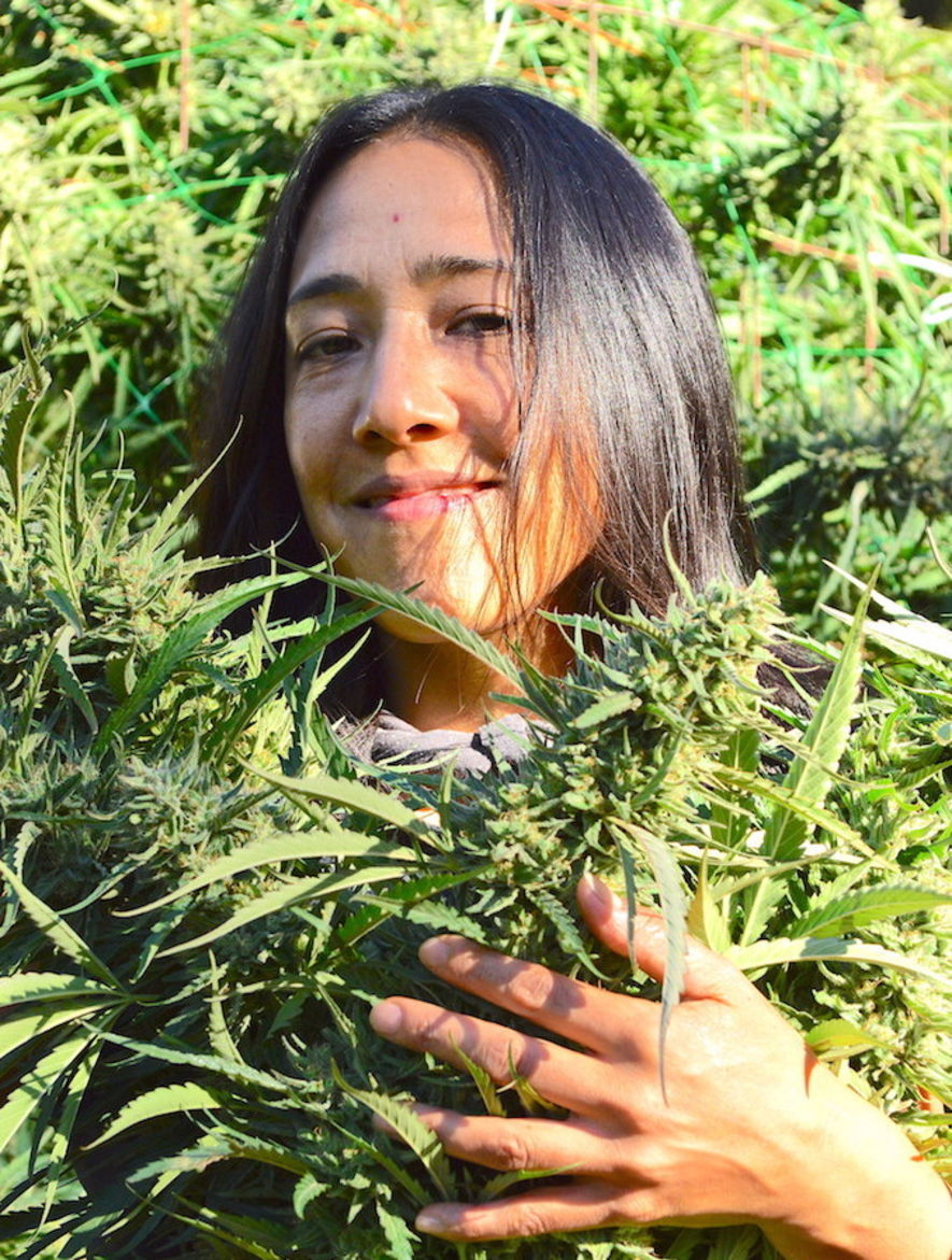 women cultivating cannabis