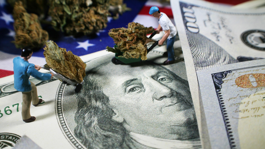 There are many moving parts to the cannabis industry