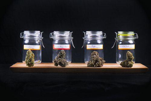 Have a variety of strains available