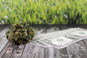 Education isn't the only thing receiving funds from cannabis tax revenue