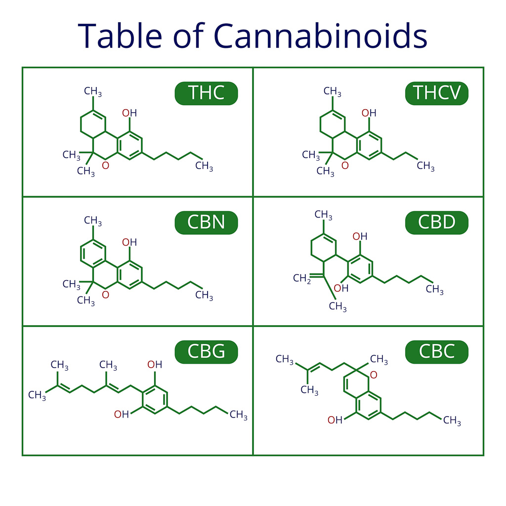 Cannabinoids occur naturally in breast milk