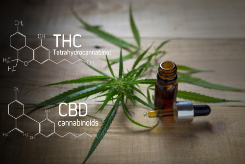 THC and CBD work well together