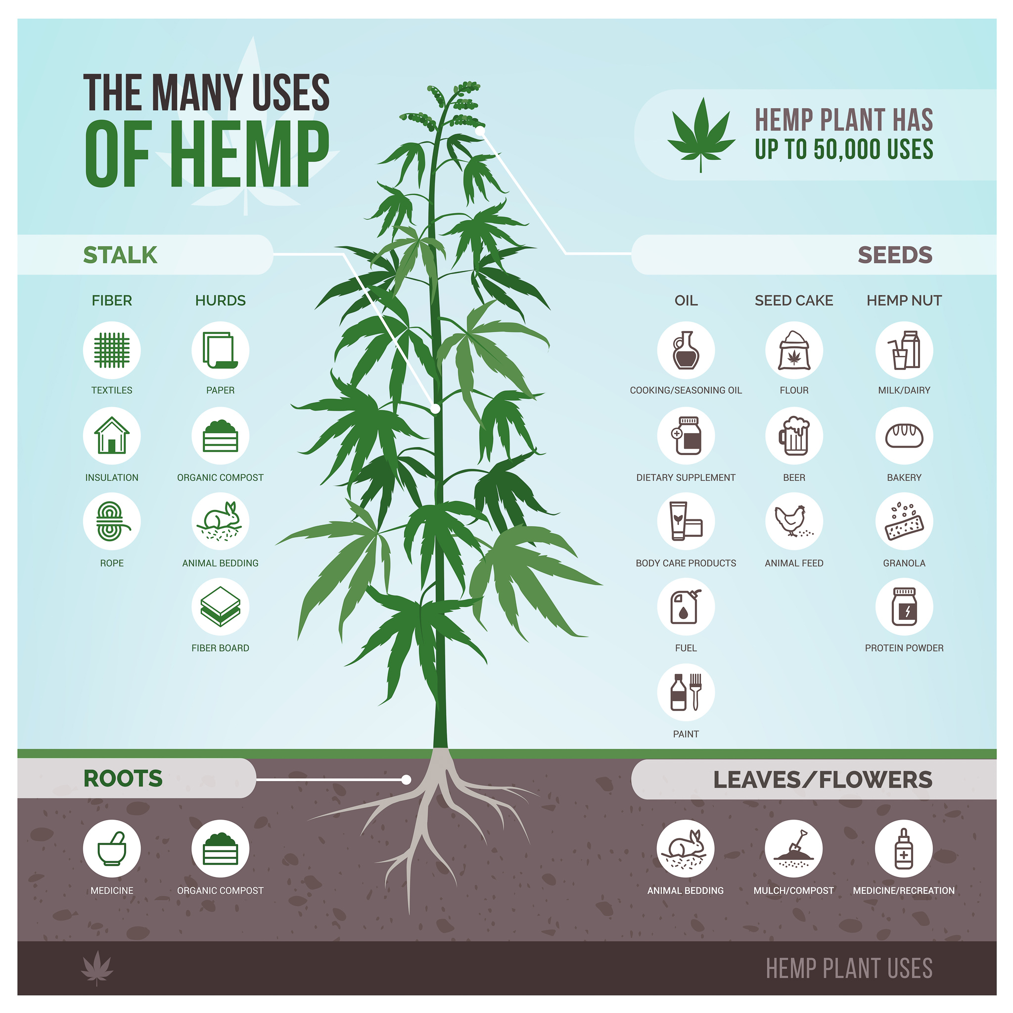 There are so many uses for hemp