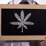 Cannabis can be an effective treatment for pain