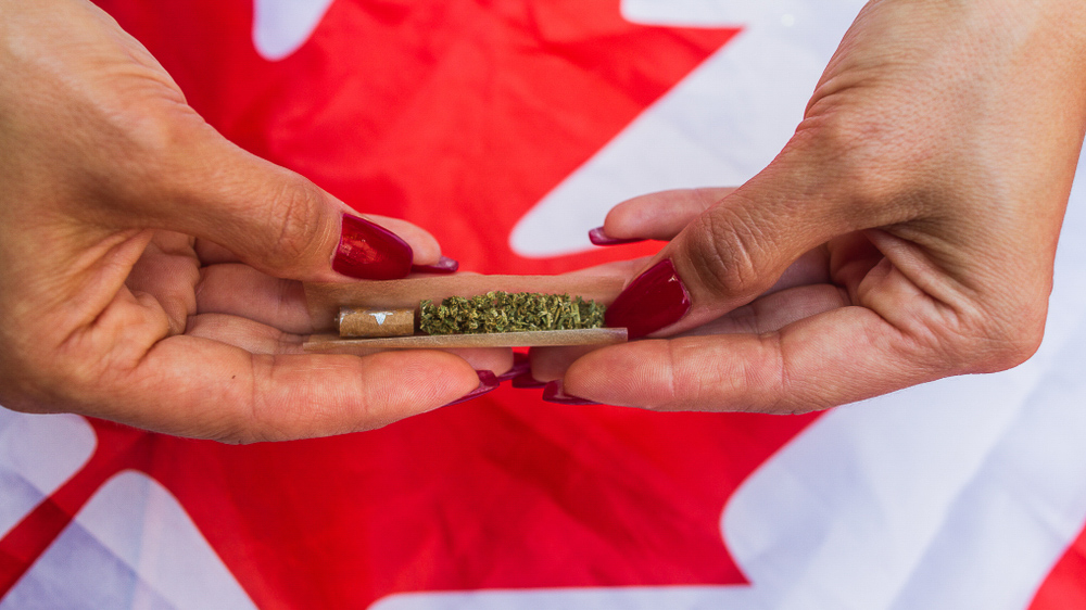 Canadian women are killing it in the weed game