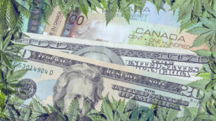 Canadian and American Currency