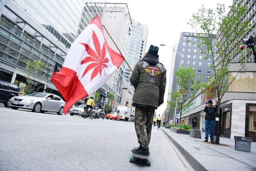 Man advocating for cannabis in canada
