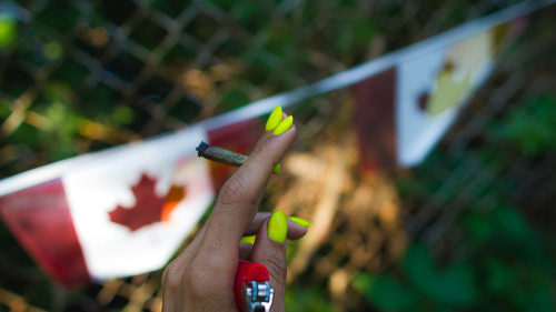 Canada just nationally legalized cannabis
