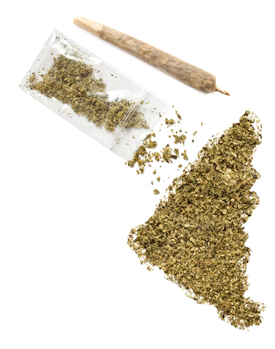 Crumbled weed in the shape of Yukon