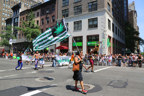 Cannabis activists during the NYC pride parade