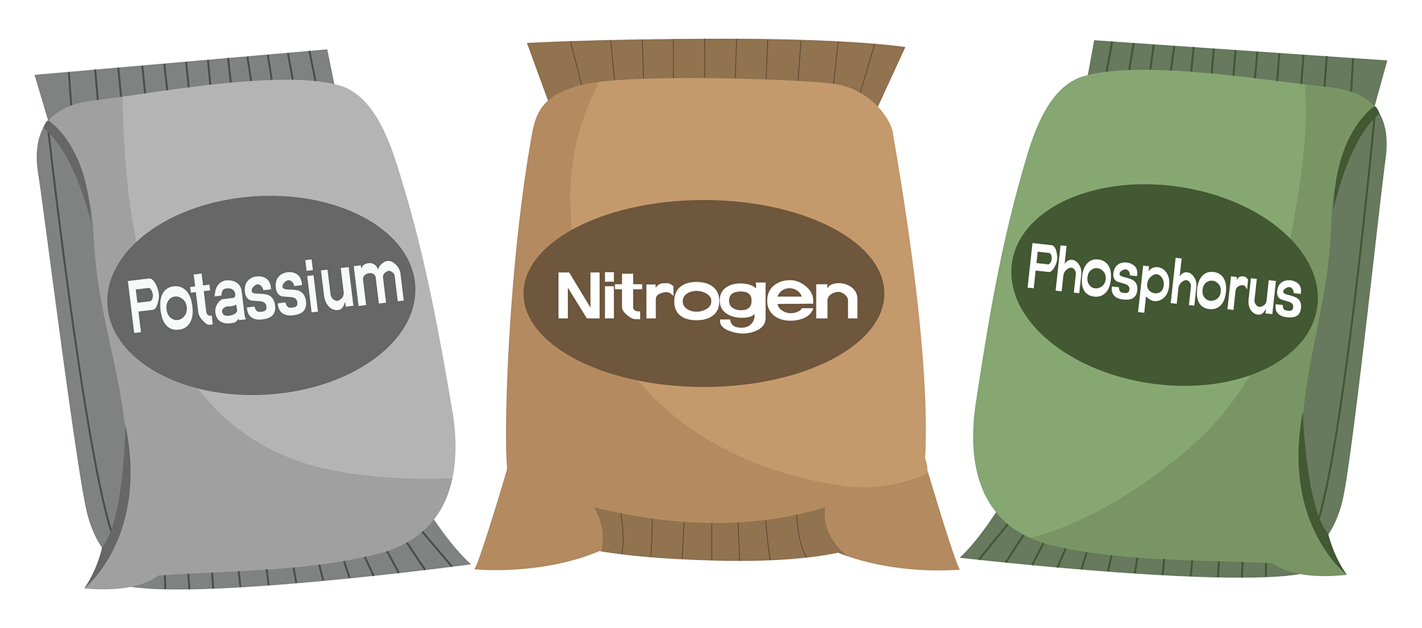 Nutrients your cannabis plant needs, Phosphorous Nitrogen and Potassium