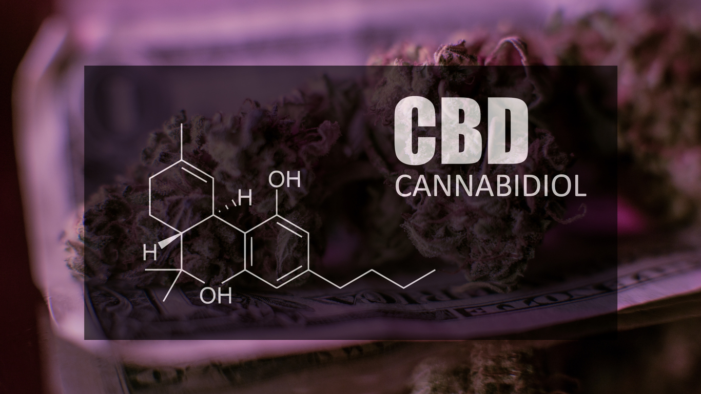 Chemical formula of Cannabidiol (CBD). Close-up