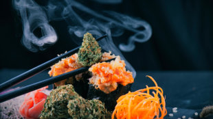 Cannabis buds served on a sushi roll with smoke and chopsticks on a dark background