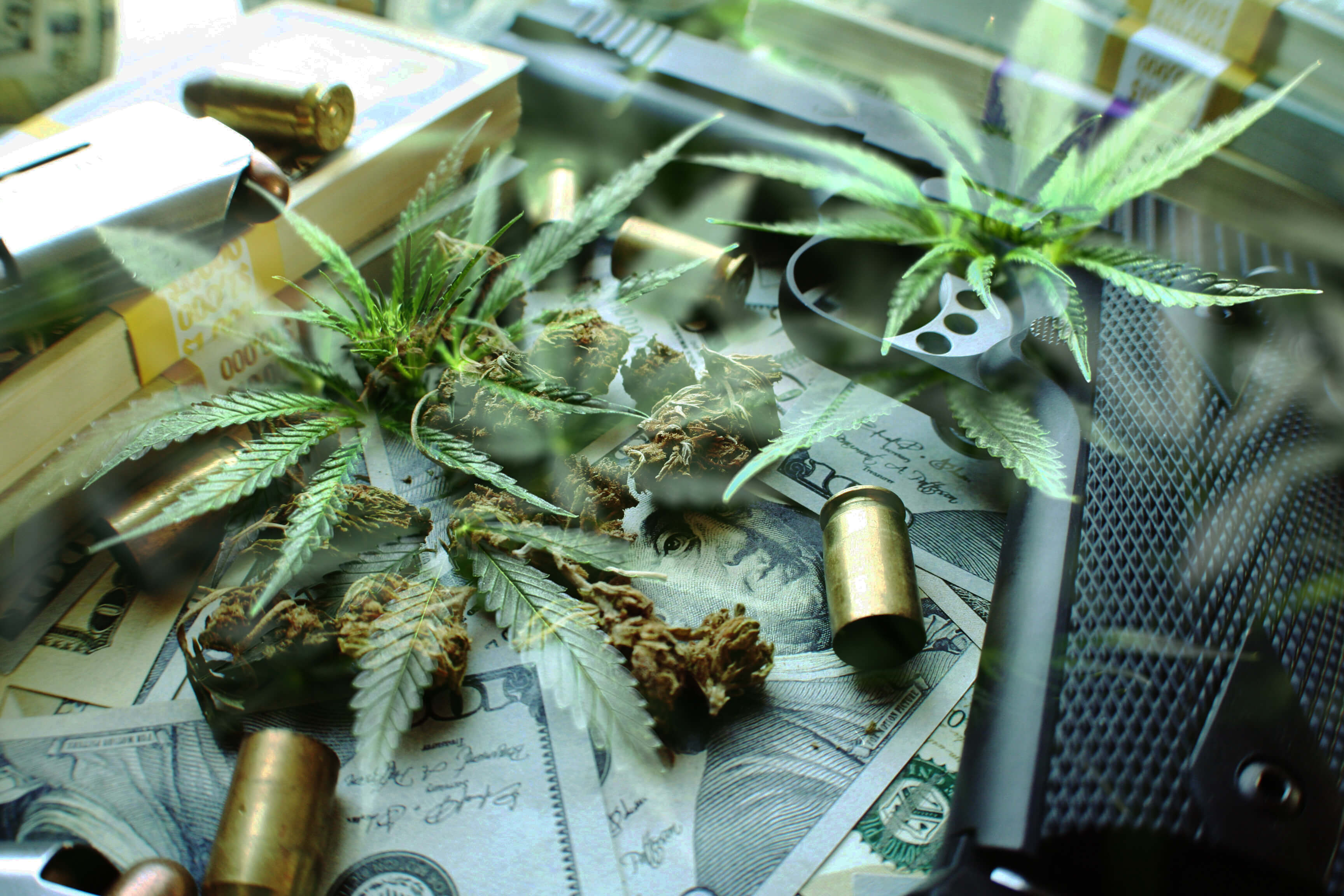 Marijuana leaves, used bullets and money.