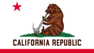 bear smoking out of bong on California state flag