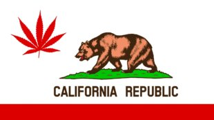 California flag with a weed leaf.