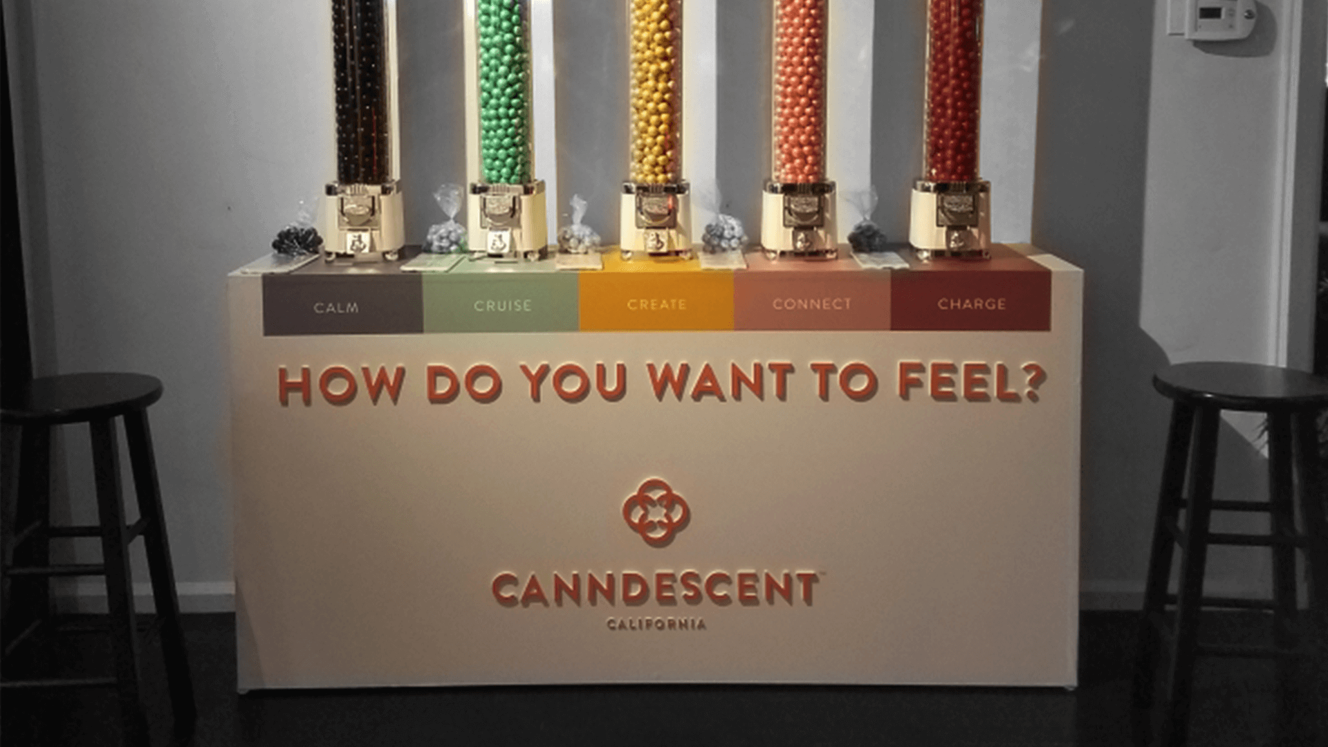 Canndescent's Stylus Launch Party