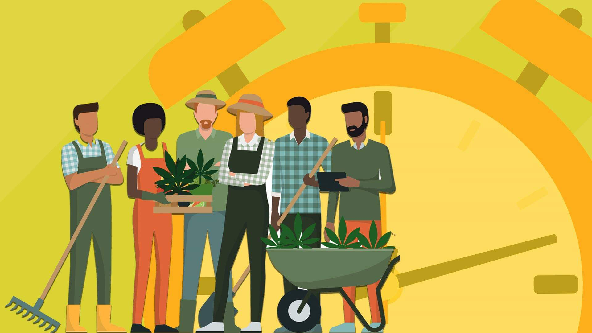 Animated photo of marijuana farmers.
