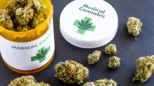 Medical marijuana buds in large prescription bottle with branded cap on black background