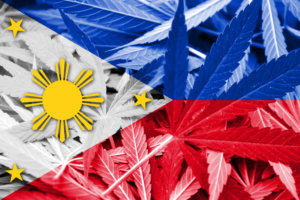 Philippines Flag on cannabis background. Drug policy. Legalization of marijuana