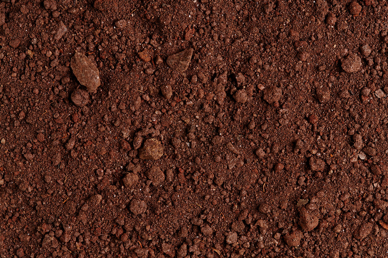 Ground Texture. Top View of a Dark dirt Soil. Close Up Macro View of Dirt and Stones. Background with Text Space. Full Frame.