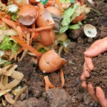 compost and hands, fertilizer