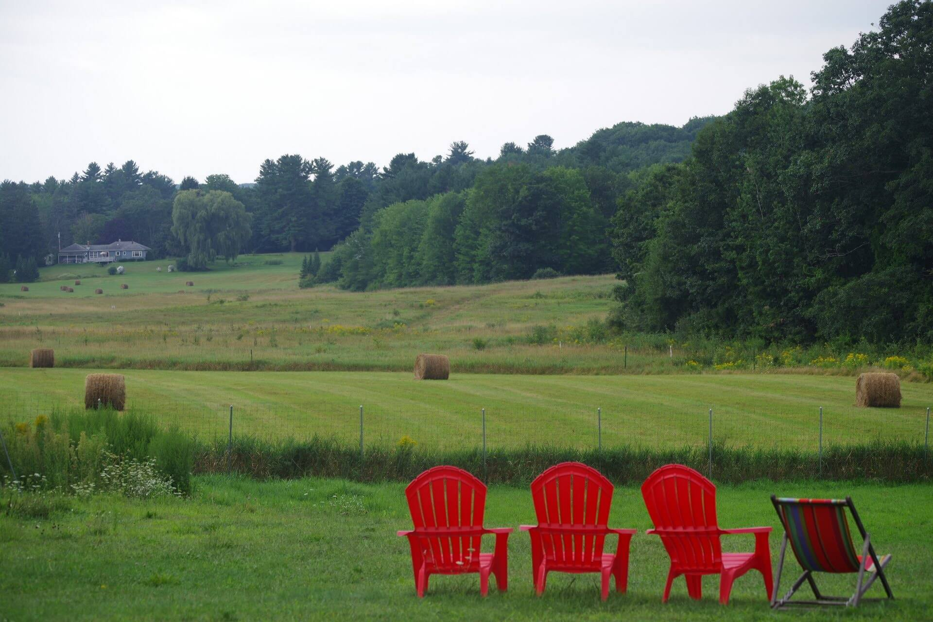 Red chairs in the backyard