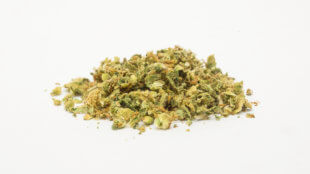 Small pile of ground marijuana on a white background