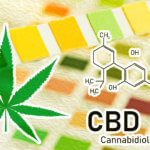 CBD drug test