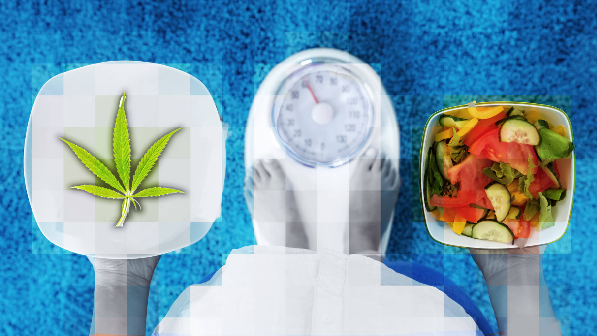weight loss and cannabis