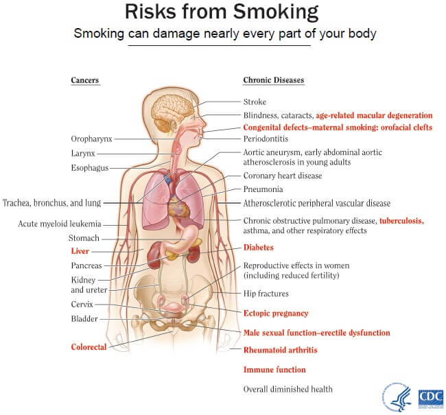 risks from smoking cigarettes by the CDC