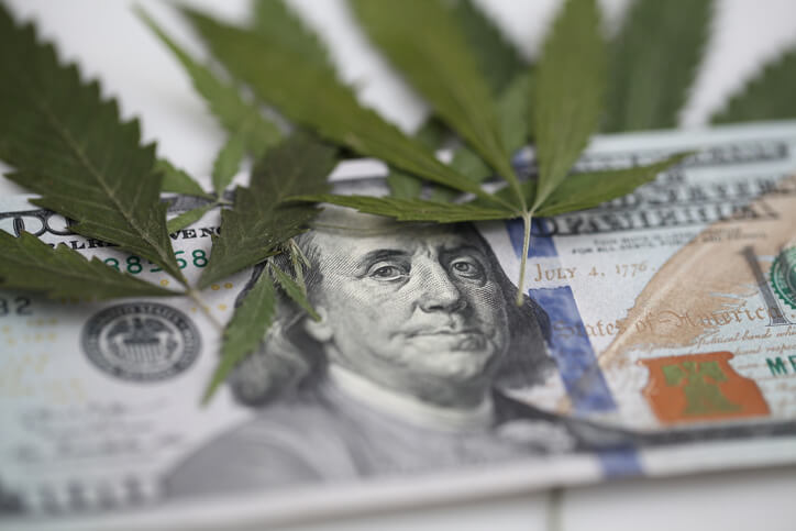 Marijuana leaves covering a$100 bill.