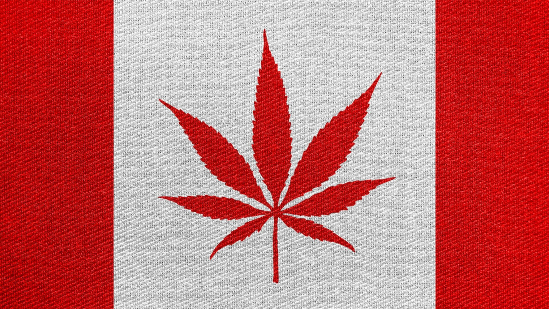 Canadian flag with a marijuana leaf in the center.