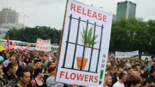 """Warsaw, Poland - May, 28th 2011: 'Free cannabis, legalize it' - rally for soft drugs (marihuana, hash) legalization"""