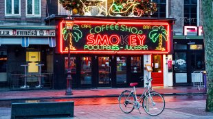 Amsterdam's weed laws
