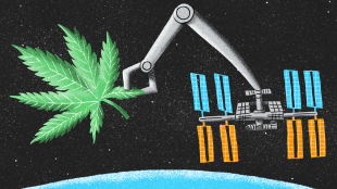 hemp in space