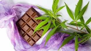 chocolate and cannabis leaves