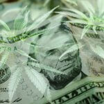 Cannabis leaves and money