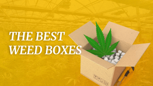 "A cardboard box with weed in it with text that says ""the best weed boxes"""