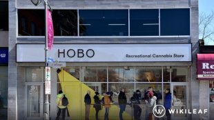 Customers wait in line to enter the Hobo Recreational Cannabis store on Bank St the first day for legal retail store sale of cannabis in Ontario.